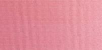 Einfarbig Wildrose